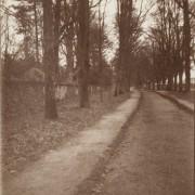 Arlesford, Winchester