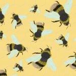 Swarm Trial Commisson Amy Jones (002)